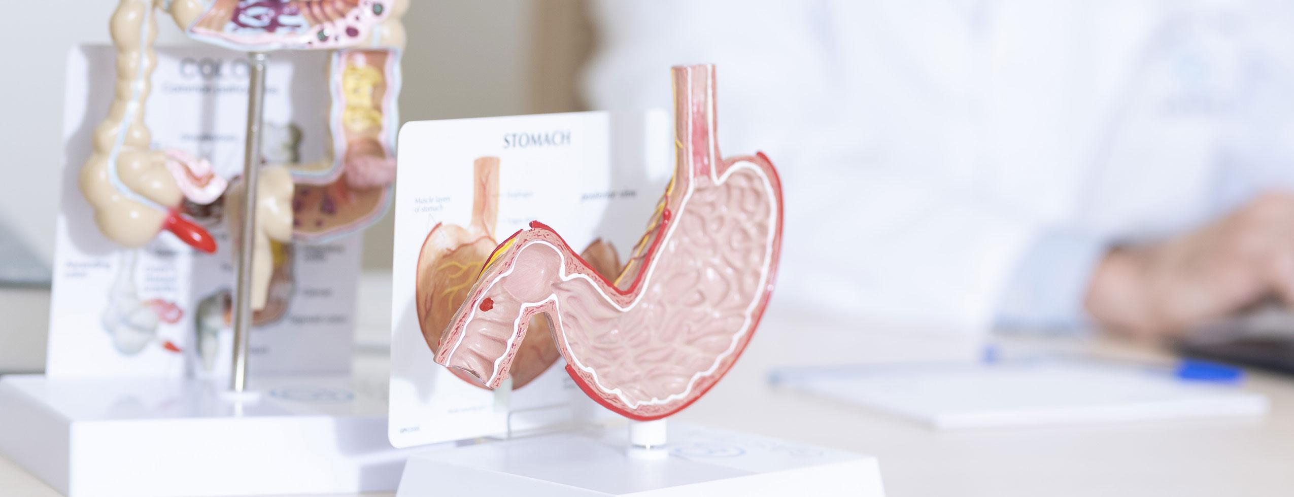 medicos-digestivos-en-madrid